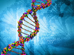 Genetic Testing on Conny's Health Show on June 19, 2015